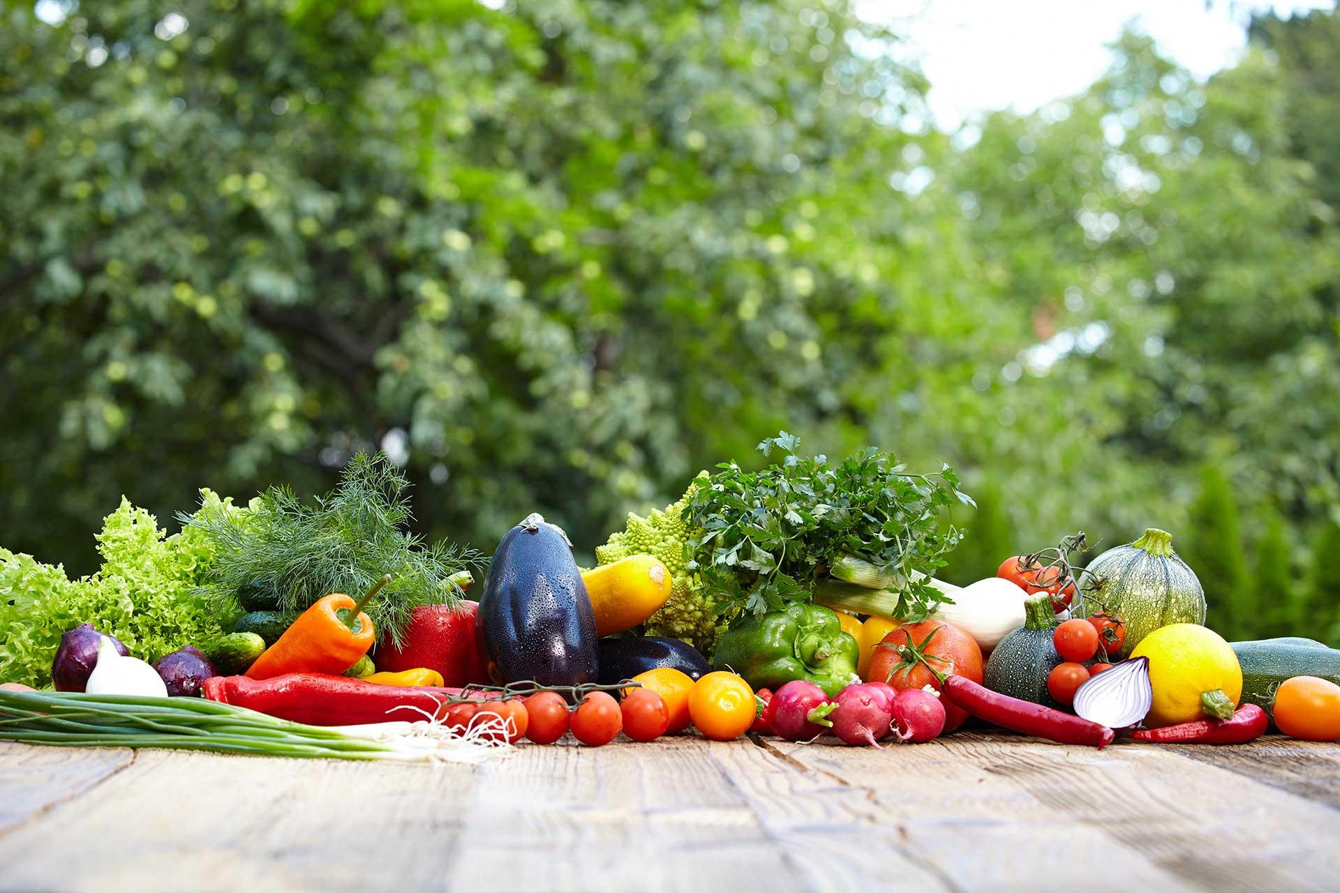 Cours de cuisine bio dijon et en bourgogne atelier vegan - Cours de cuisine dijon atelier des chefs ...
